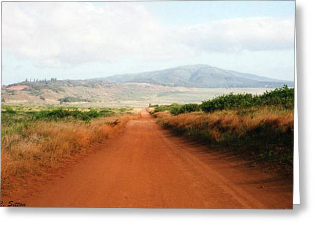 Lanai Road Greeting Card