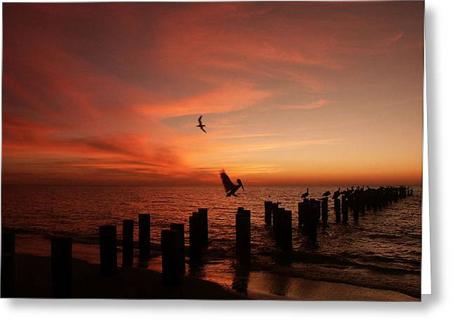 Greeting Card featuring the photograph Landing Pattern by Bill Lucas