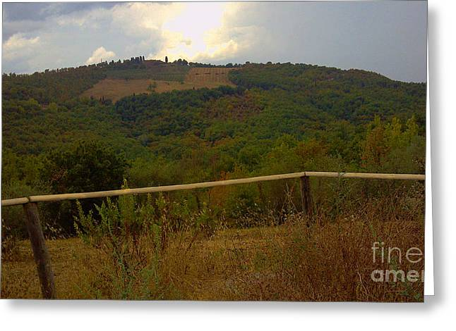 Landscape Greve In Chianti Greeting Card by Nettie Pena