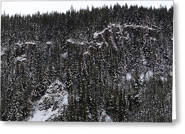 Landscapes - 0004 Greeting Card