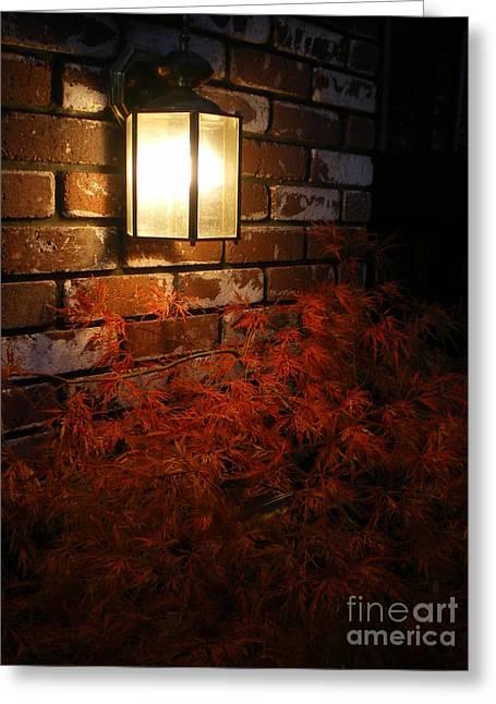 Lantern Light Maple Greeting Card by Linda Battles