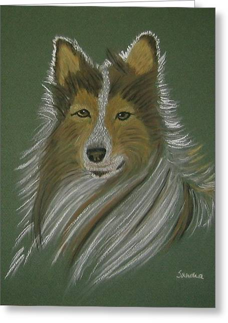 Lassie Greeting Card by Sandra Frosst