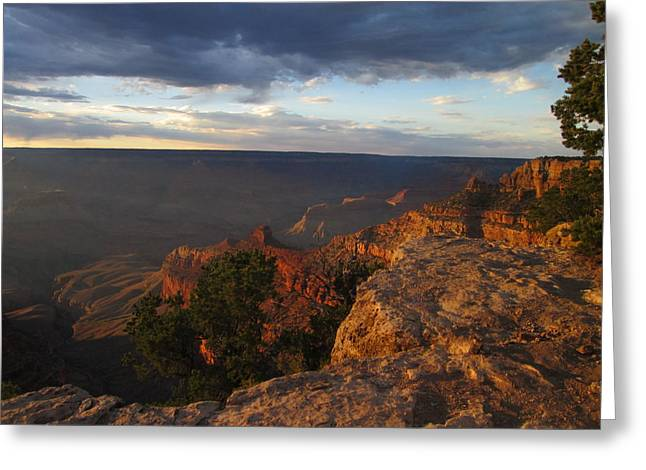 Last Rays At Grand Canyon Greeting Card by Pasha Sourbeer