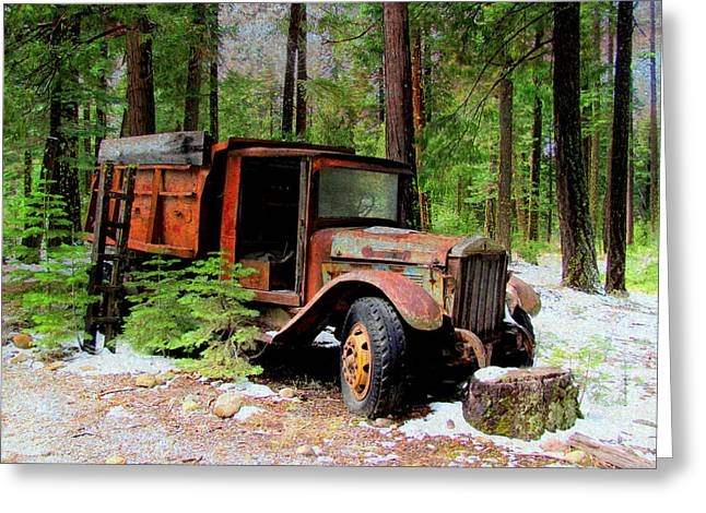 Greeting Card featuring the photograph Last Stop by Irina Hays