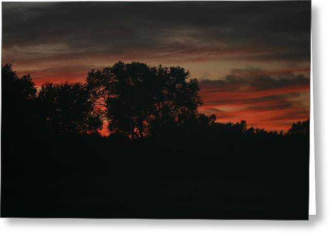 Late Evening Skies Greeting Card