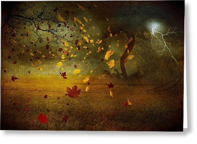 Late October Greeting Card by Svetlana Sewell