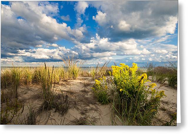 Greeting Card featuring the photograph Late Summer Dunes Ocean City by Jim Moore