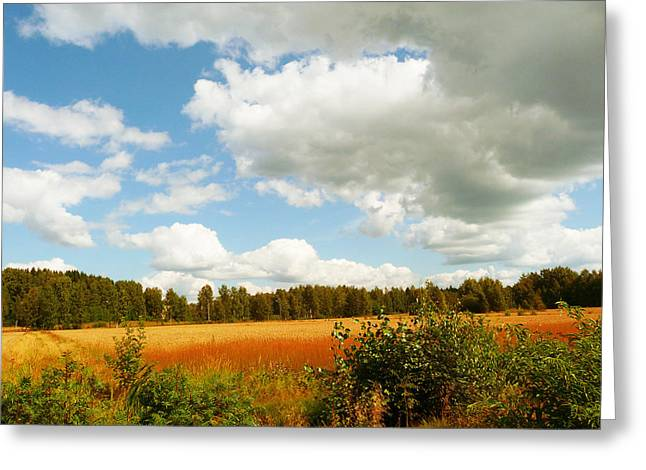 Late Summer Greeting Card by Mikko Tyllinen