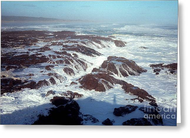 Greeting Card featuring the photograph Lava Rock 90 Mile Beach by Mark Dodd