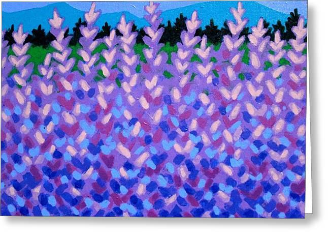 Lavender Vista  Greeting Card