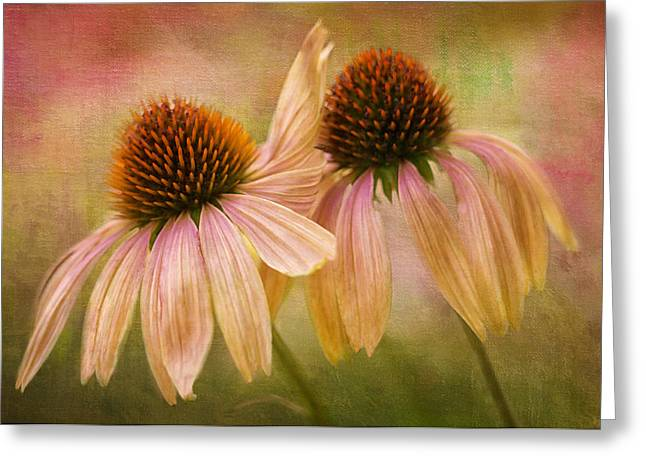 Lean On Me Greeting Card by Donna Eaton