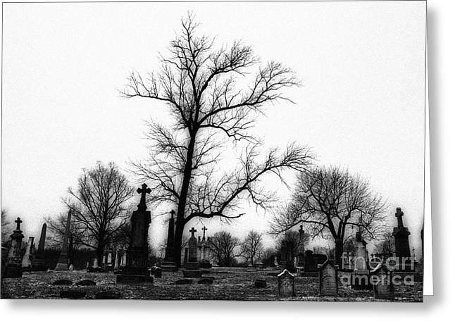 Leaning Crosses Greeting Card by Jeff Holbrook