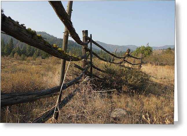 Leaning Fence  Greeting Card by Jeannine Welfelt