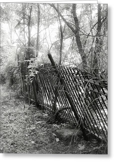 Greeting Card featuring the photograph Leaning Fence by Mary Almond