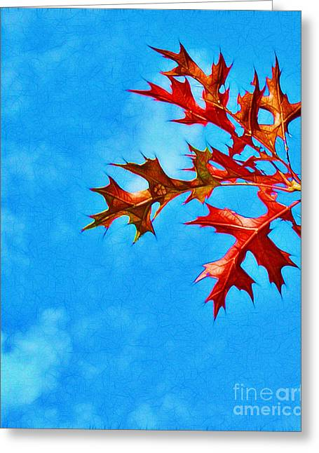 Leaves Against The Sky Greeting Card by Judi Bagwell