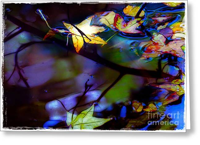 Leaves And Reflections Greeting Card by Judi Bagwell