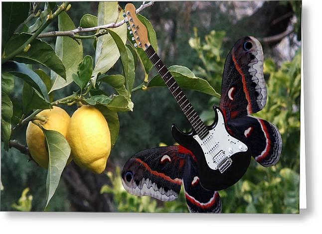 Lemons For U2  Greeting Card by Eric Kempson