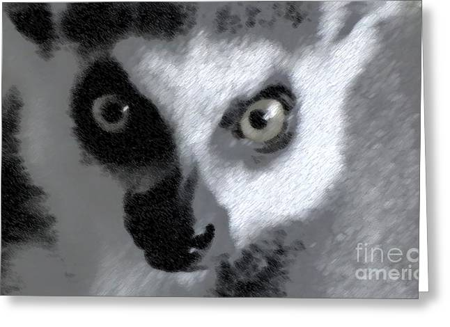 Lemur Greeting Card by John From CNY