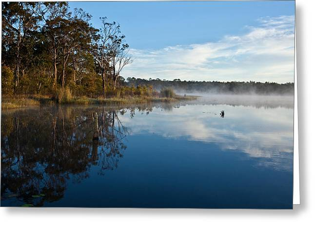 Lenthalls Dam 03 Greeting Card by David Barringhaus