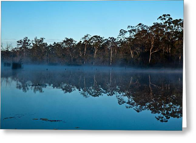 Lenthalls Dam 04 Greeting Card by David Barringhaus