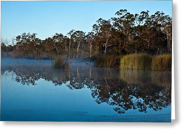 Lenthalls Dam 14 Greeting Card by David Barringhaus
