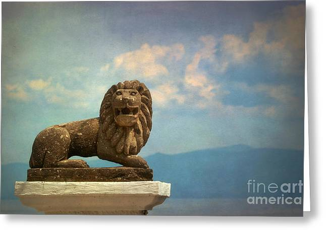 Leo On A Roof Greeting Card by Susan Isakson