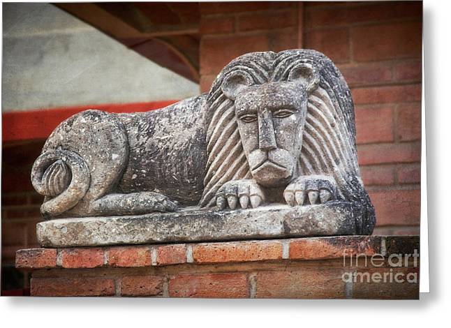 Leo On A Wall Greeting Card by Susan Isakson