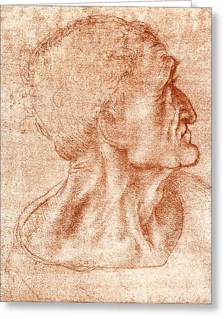 Leonardo Da Vinci Artwork Greeting Card by Sheila Terry