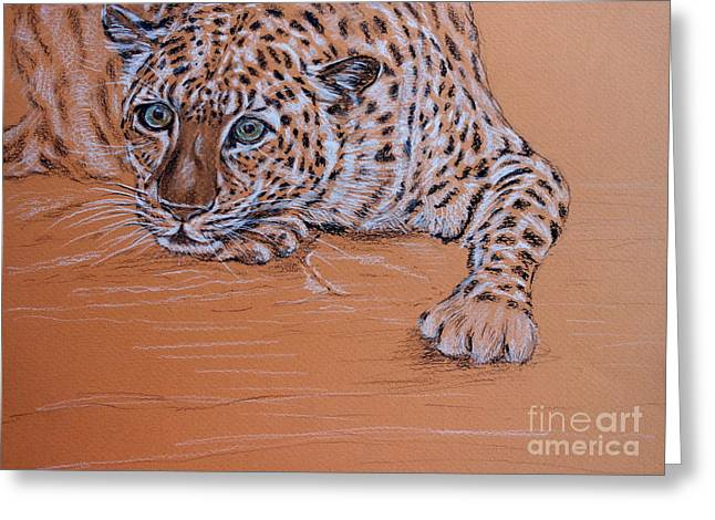 Leopard 1 Greeting Card by Amanda Dinan