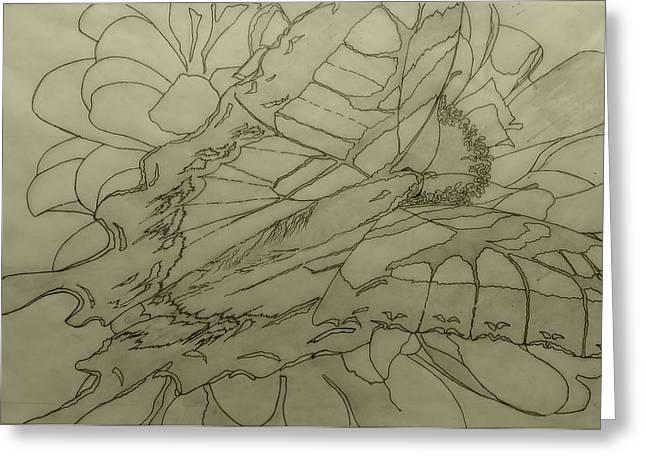 Lepidoptery - Pencil Sketch - Wip Greeting Card by Joel Deutsch