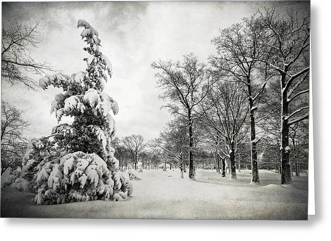 Let It Snow Greeting Card by Yelena Rozov