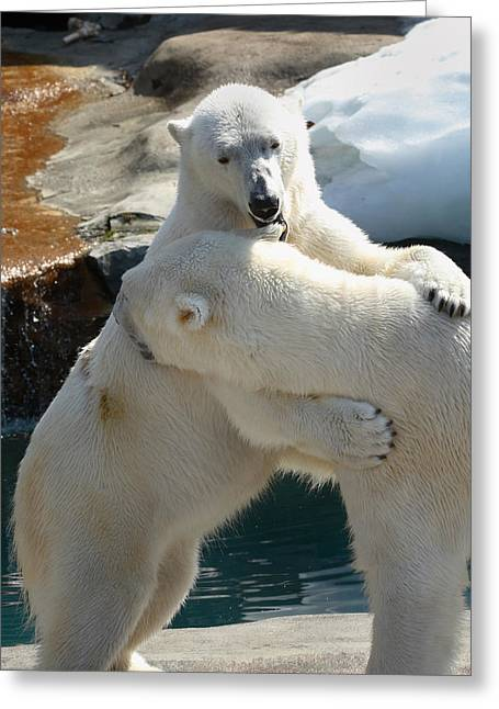 Greeting Card featuring the photograph Let Me Whisper In Your Ear by Cindy Haggerty