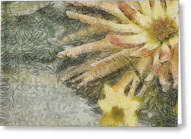 Let The Sunshine In Greeting Card by Trish Tritz