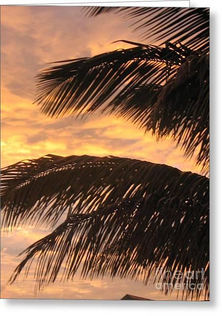 Lever Du Soleil - Ile De La Reunion Greeting Card by Francoise Leandre
