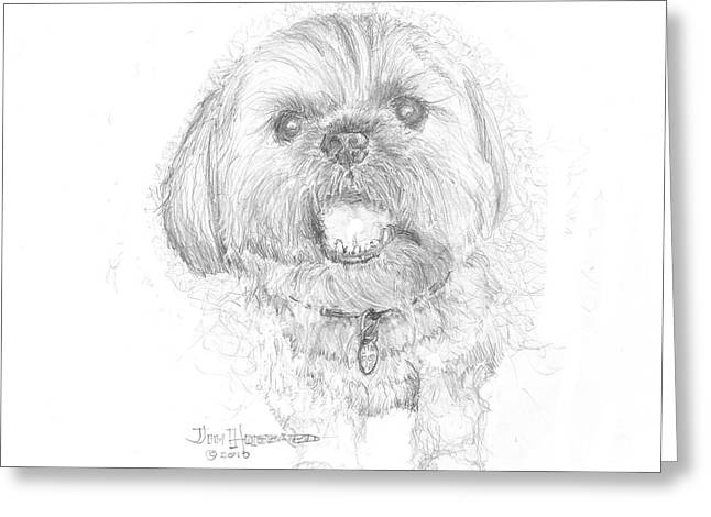 Lhasa Apso Greeting Card