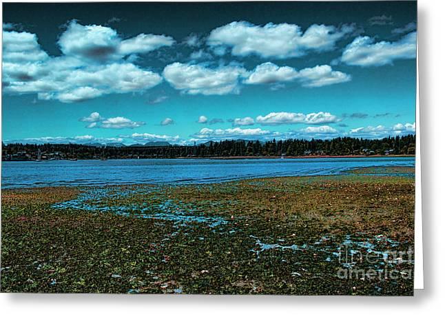 Liberty Bay Seattle Wa Greeting Card by RJ Aguilar