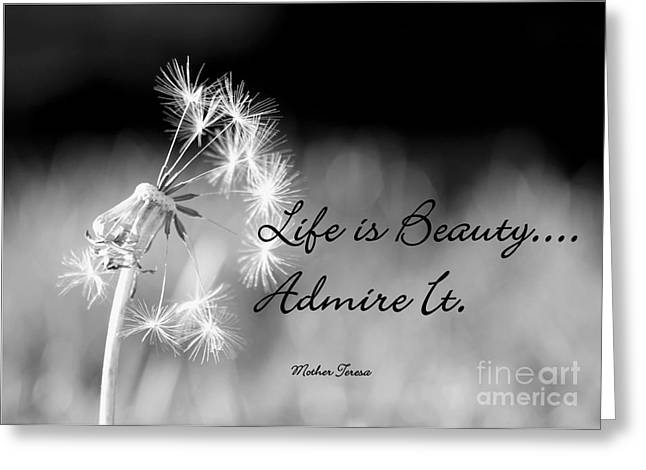 Life Is Beauty Greeting Card by Laurinda Bowling