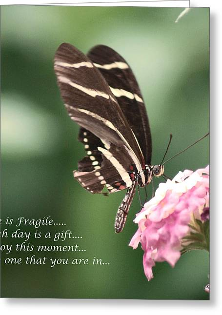 Life Is Fragile Greeting Card