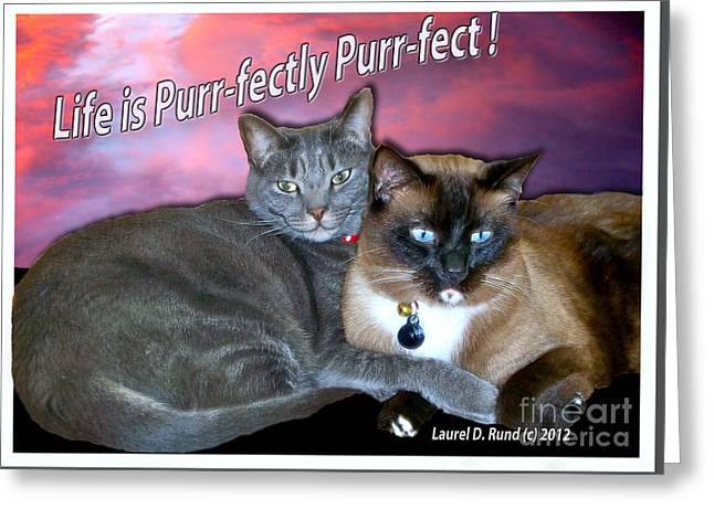 Life Is Purrfectly Purrfect Greeting Card