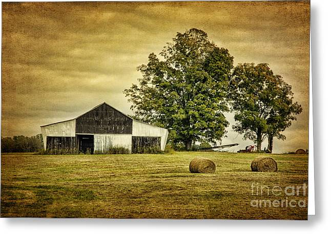 Life On The Farm Greeting Card