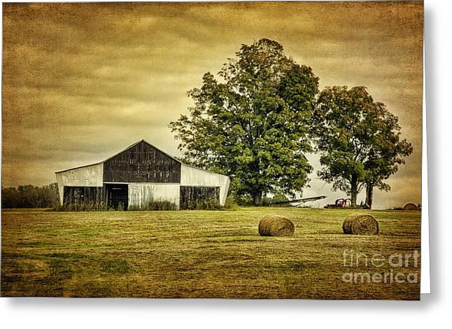 Life On The Farm Greeting Card by Cheryl Davis