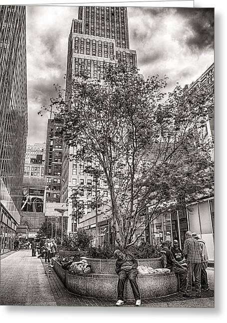 Greeting Card featuring the photograph Life On The Street by Steve Zimic