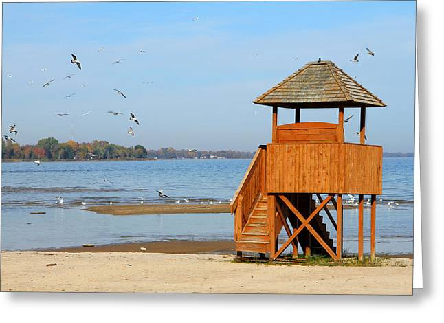 Greeting Card featuring the photograph Lifeguard Lookout by Mark J Seefeldt