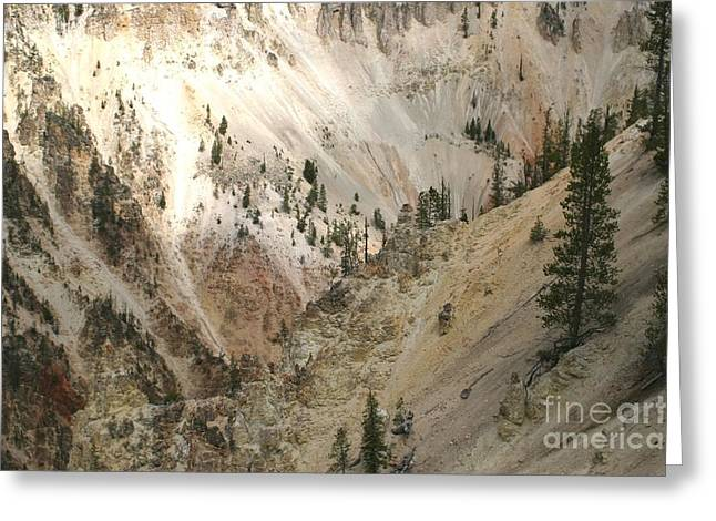 Light And Shadows In The Grand Canyon In Yellowstone Greeting Card by Living Color Photography Lorraine Lynch