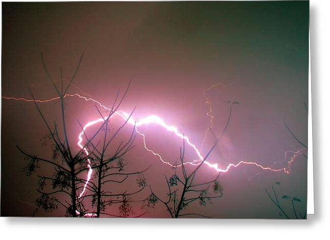 Lightning And Trees Greeting Card