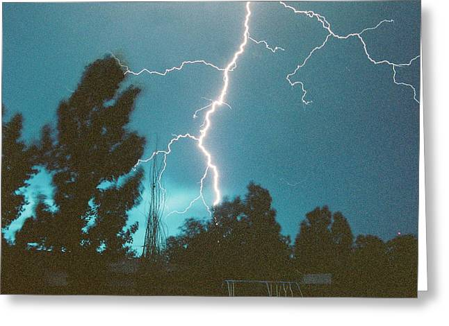 Lightning Tree Greeting Card by Trent Mallett