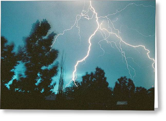 Lightning Trees Greeting Card by Trent Mallett