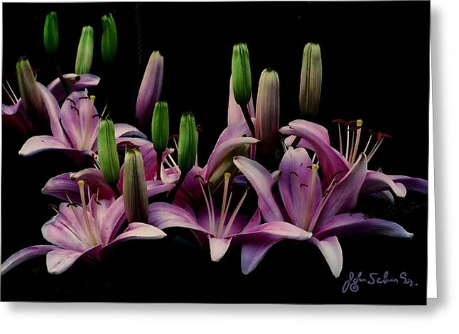 Lilies At Midnight Greeting Card
