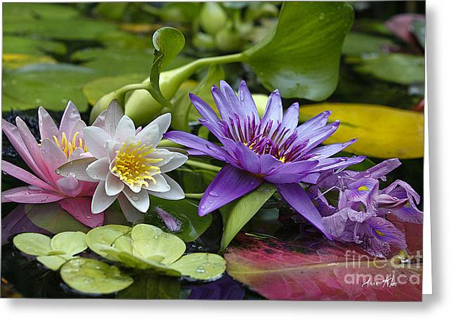 Greeting Card featuring the photograph Lilies No. 26 by Anne Klar