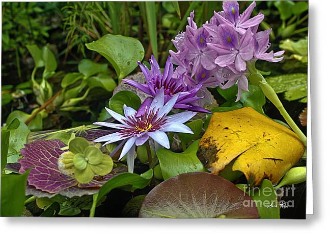 Greeting Card featuring the photograph Lilies No. 39 by Anne Klar
